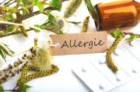 Allergie cheval